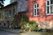 Torsdag Blomster i Fredrikstad
