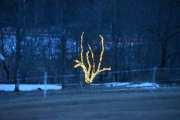 Her tror jeg det er en kombinasjon av julelys og det å gjøre det koselig i Maridalen