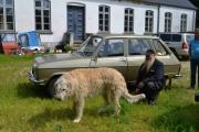 Tirsdag - må bare ha et bilde av ulvehunden og bilen