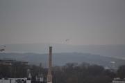 Den gamle høye pipa, Måken som flyr rundt og rett under litt av Slottsparken