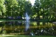 Det er tre dammer i Slottsparken nå, og dette er Dronningdammen