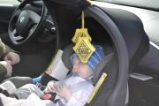 Lukker forsiktig opp sidedøra og der sitter den nye maskoten til Renaultklubben