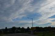 Ved Alnabru når jeg kommer til rundkjøringen oppdager jeg noen fugler