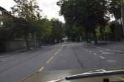 Nå kjører jeg i Bygdøy allé, en gate som er kjent for sine Kastanjetrær fra gamle dager