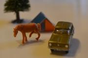 Renault 6 og Hest (Eccus Cabballus)