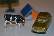 Renault 6 og Ku (Ruminantia)