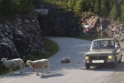 Renault 6 og Sauer