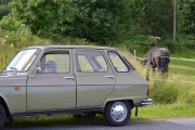 Renault 6 og en Hest