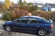 Renault Laguna og en katt på taket i Våler