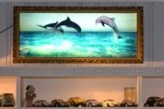 Renault og Delfiner