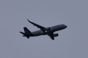 Morten 13 oktober 2019 - Stort fly over Høyenhall, det blir to fly i dag så må vi vente på godvær