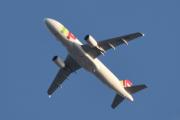 Morten 8 september 2019 - Stort fly over Høyenhall, det er CS-TNW Airbus A320-214 TAP Air Portugal