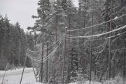 At det av og til er mye snø her ser vi på ledningene mellom stolpene