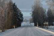 Så kommer jeg på en vei som jeg like veldig godt, fri fartsgrense så kan det også dukke opp en Elg
