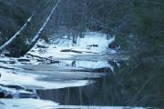 2 januar 2019 -  Nå ser vi nedover elven mot Dausjøbrua