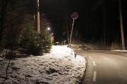 Knut 10 februar 2021- Det er ikke uvanlig at han ser Elgen i Maridalen