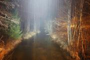 Knut 18 desember 2020 - En liten kveldstur i småregn i kveld