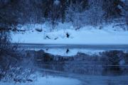 29 desember 2018 - Vi får oppleve en soloppgang ved Dausjøen, alt speiler seg i vannet