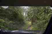 Vi er tydeligvis snart framme, syns egentlig ikke at vi trengte å kjøre enda lenger inn i skogen