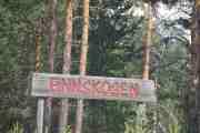 Vi er fremdeles i Finnskogen ser jeg
