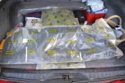 Renault 6TL sidepanel