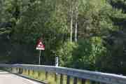 Nå er det håp, vi skal se Elg i løpet av 0,1 til 3,1 km. Hvorfor er de akkurat der?