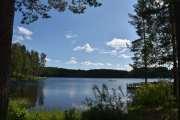 Blir som Frognerbadet i Oslo, her drar alle i Bjørkelangen og bader