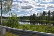 Vakker natur er det her også, ser vi Orretjenn langs veien nå?