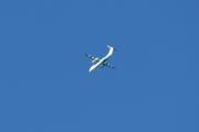 Morten 1 september 2020 - Et motorfly over Høyenhall, alltid litt for langt unna