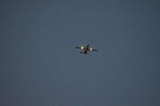 Morten 13 oktober 2020 - Et fly over Høyenhall, den ligger nok her under de store flyene, men at den lyste opp i halen var spesielt