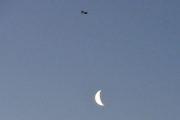 Morten 19 januar 2020 - Stort fly og månen, dette er tidlig på morgenen