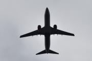Morten 27 august 2020 - LN-RCN over Høyenhall, det er et Boeing 737-883 som SAS eier