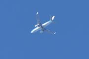 Morten 9 oktober 2020 - Stort fly over Høyenhall, kan strekke meg langt - men ikke så langt