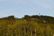Fredag - Et eller annet sted her står det en Elg, jeg ser den bare ikke