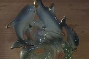 Delfin som snuser