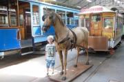 2014 - Denne hesten ble han glad i