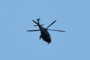 Morten 19 juli 2021 - Politihelikopter over Høyenhall, hadde det ikke vært en fugl her så hadde du ikke sett denne