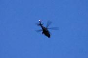 Morten 2 august 2021 - Politihelikopter over Høyenhall på kvelden, så da sier vi god natt og sover godt denne natten også
