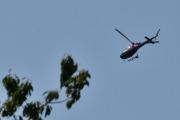 Morten 24 juli 2021 - LN-OFY hilser på oss på Høyenhall, den liker og gjemme seg bak trærne, men her klarte jeg og fokusere på helikopteret