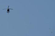 Morten 24 juli 2021 - LN-OFY hilser på oss på Høyenhall, måka flyr forbi men han står fremdeles der og ser på meg