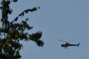 Morten 24 juli 2021 - LN-OFY hilser på oss på Høyenhall, den gjemmer seg bak treet hver gang