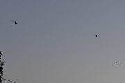 Morten 13 oktober 2020 - Tre helikoptre over Høyenhall, at det ikke er en fugl med på bilde må skyldes at det er litt sent på kvelden
