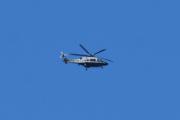 Morten 26 august 2020 - Politihelikopter over Høyenhall, men hvem av dem er du?
