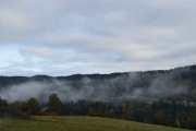 Endelig frisk luft igjen og vi kan se på naturen igjen, men glem det - det er ingen Elg der, har sjekka