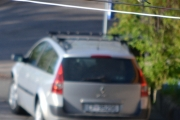 Renault Megane og en Kjøttmeis