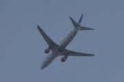 Morten 5 september 2019 - Stort fly over Høyenhall, tar jeg ikke feil så er det SAS med sin LN-RCN - Boeing 737-883