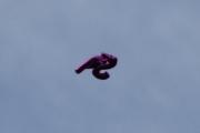 Morten 12 juni 2021 - Heliumballong over Høyenhall, det er nok vinden håper jeg