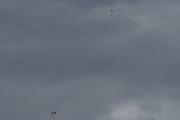 Morten 2 juli 2020 - 3 i fallskjerm over Oslo, her ser vi to av dem, synd det var overskyet