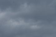 Morten 2 juli 2020 - 3 i fallskjerm over Oslo, her ser vi alle tre men jeg fikk ikke bilde av flyet