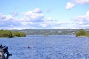 Langt der ute svømmer det noen fugler foran den lille øya